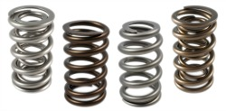 Engine Valve Springs1